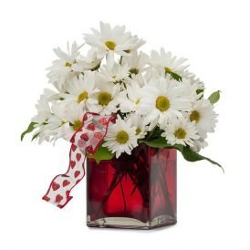 Peaceful Wishes Flowers ProFlowers.pk