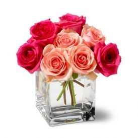 BUNCH OF PINK & RED ROSES - ProFlowers.pk