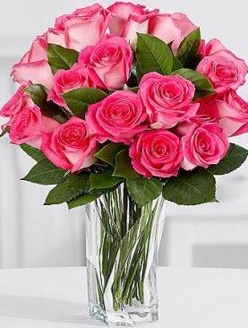 18 Pink Jewel Roses