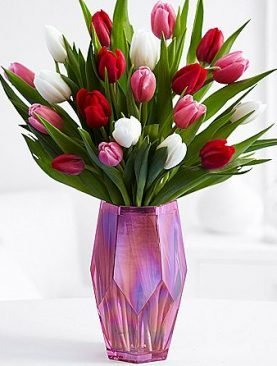 20 Lovely Tulip
