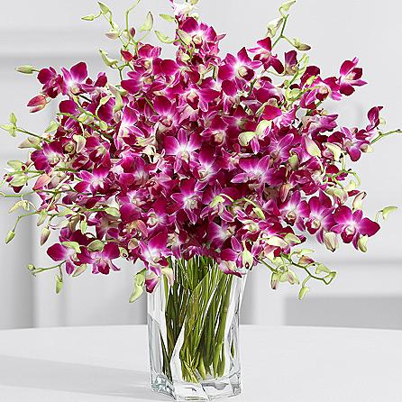 Online Flower Gift Delivery Pakistan Send Flowers Gift To Lahore Islamabad Karachi Same Day Delivery Flowers