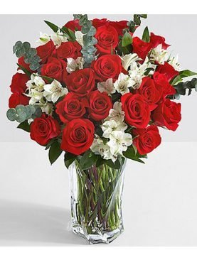 Valentine Two Dozen Red Roses