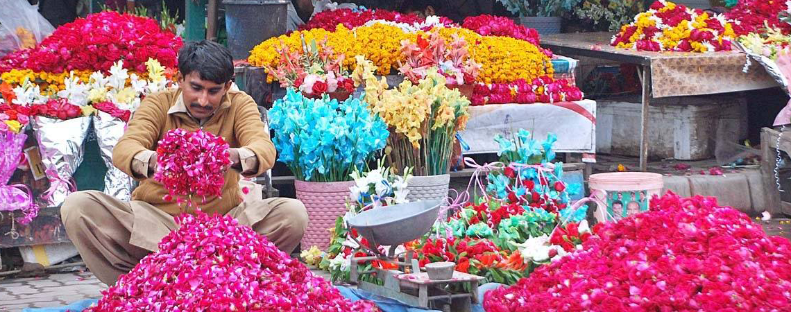 Floriculture: Fast Growing Sector of Pakistan
