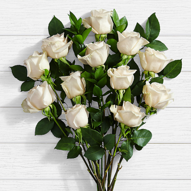 White Roses Onilne Delivery - ProFlowers.pk