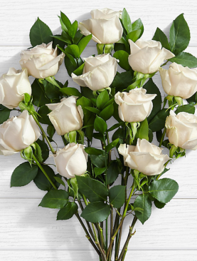 10 Long Stemmed White Roses
