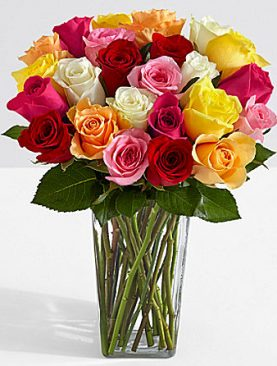 Two Dozen Mother's Day Roses