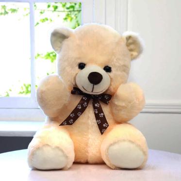 Flowers and Teddy Bear - ProFlowers.pk
