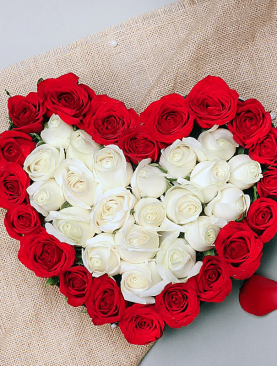 Cupid's Love