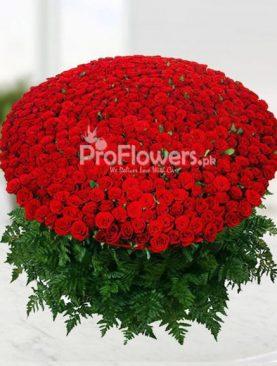 Roses Love for Love
